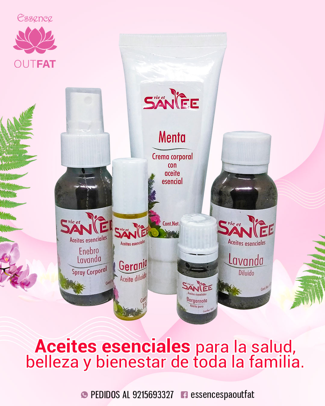 EneOut2-productos